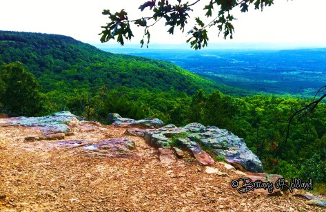 Mount Nebo, 20 miles from Belleville--My favorite place on earth